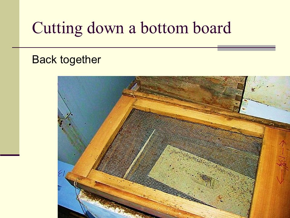 Cutting down a bottom board Back together