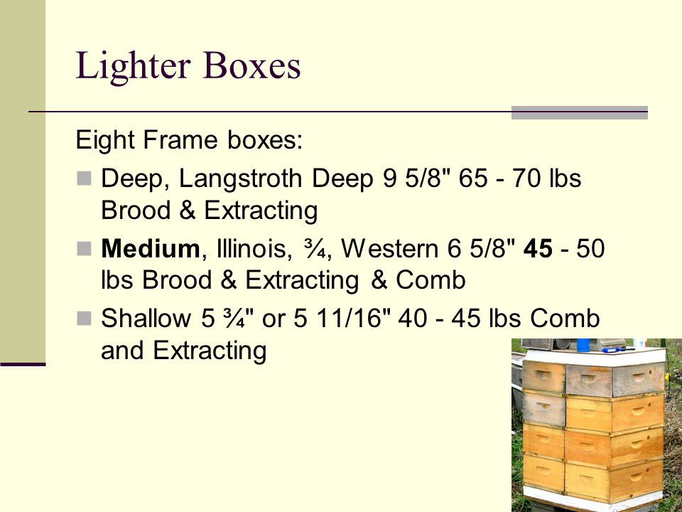 Lighter Boxes Eight Frame boxes: Deep, Langstroth Deep 9 5/8