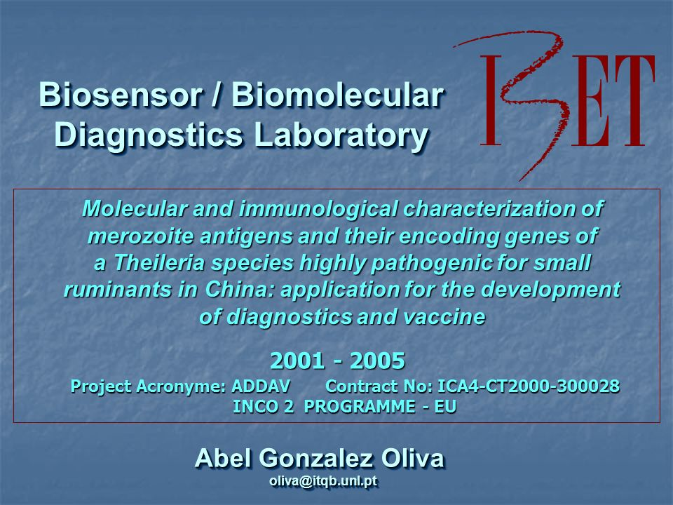 Abel Gonzalez Oliva oliva@itqb.unl.pt oliva@itqb.unl.pt Biosensor / Biomolecular Diagnostics Laboratory Project Acronyme: ADDAV Contract No: ICA4-CT2000-300028 INCO 2 PROGRAMME- EU Project Acronyme: ADDAV Contract No: ICA4-CT2000-300028 INCO 2 PROGRAMME - EU Molecular and immunological characterization of merozoite antigens and their encoding genes of a Theileria species highly pathogenic for small ruminants in China: application for the development of diagnostics and vaccine 2001 - 2005