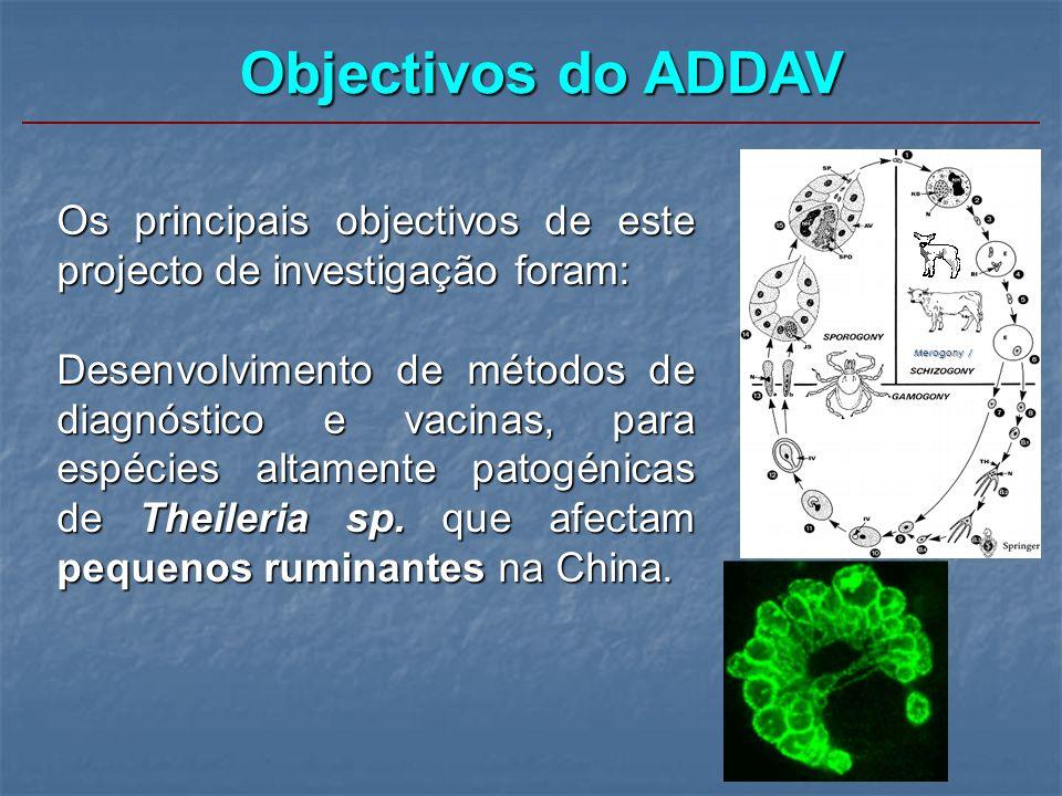 Objectivos do ADDAV Os principais objectivos de este projecto de investigação foram: Desenvolvimento de métodos de diagnóstico e vacinas, para espécie