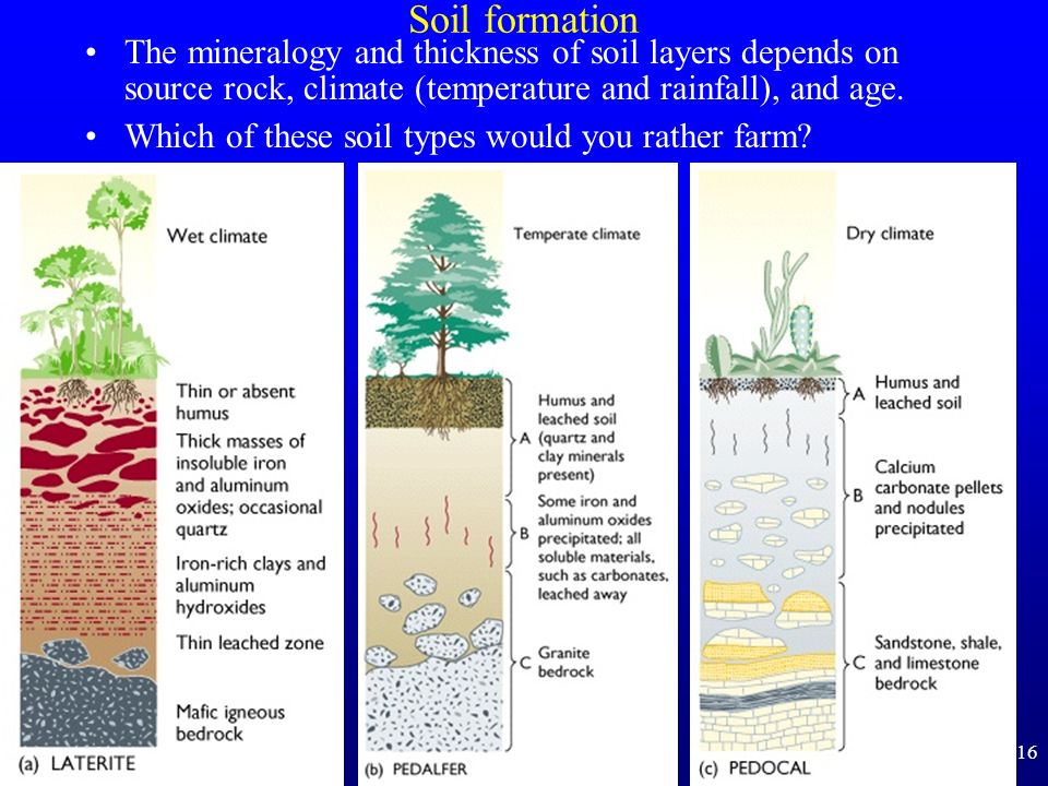 16 Soil formation The mineralogy and thickness of soil layers depends on source rock, climate (temperature and rainfall), and age. Which of these soil