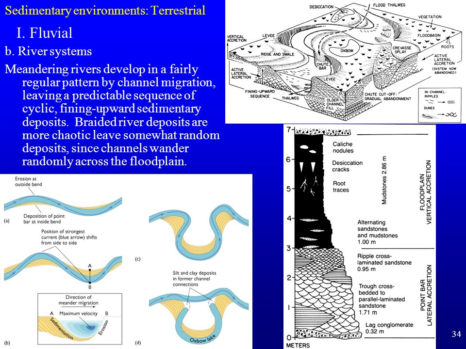 34 Sedimentary environments: Terrestrial I. Fluvial b. River systems Meandering rivers develop in a fairly regular pattern by channel migration, leavi