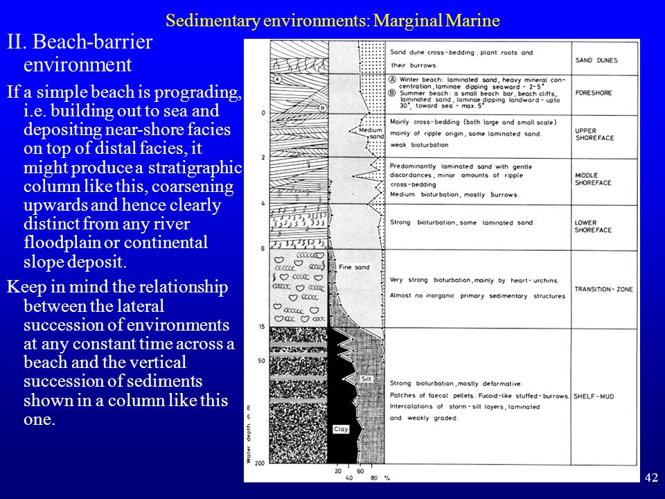 42 Sedimentary environments: Marginal Marine II. Beach-barrier environment If a simple beach is prograding, i.e. building out to sea and depositing ne