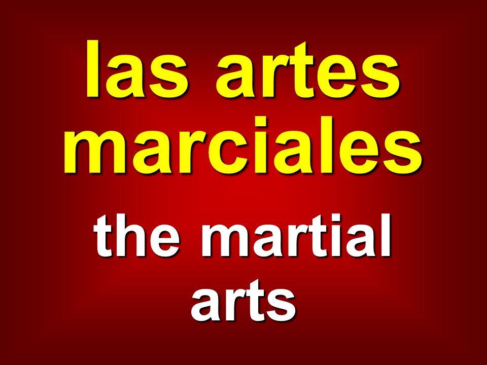 las artes marciales the martial arts