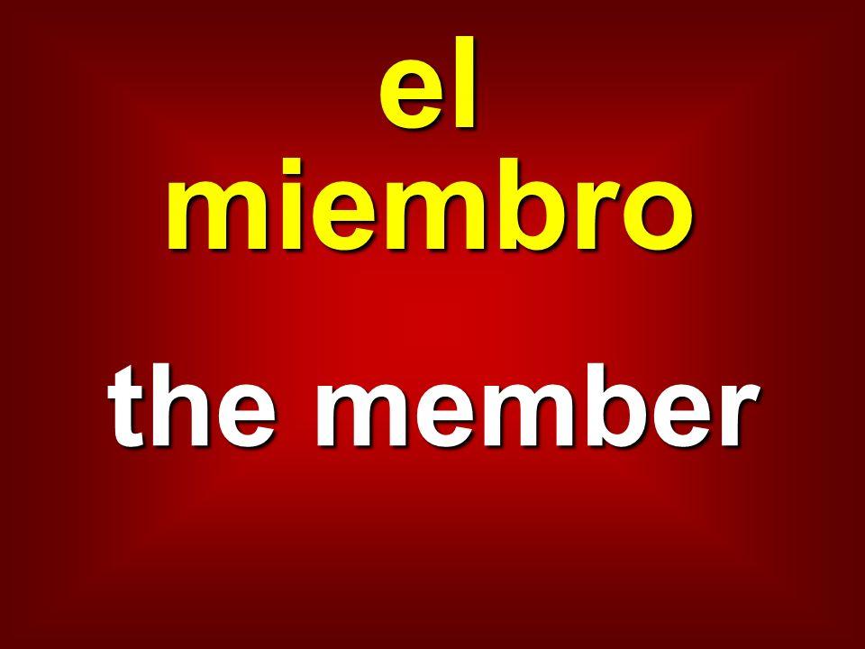 el miembro the member