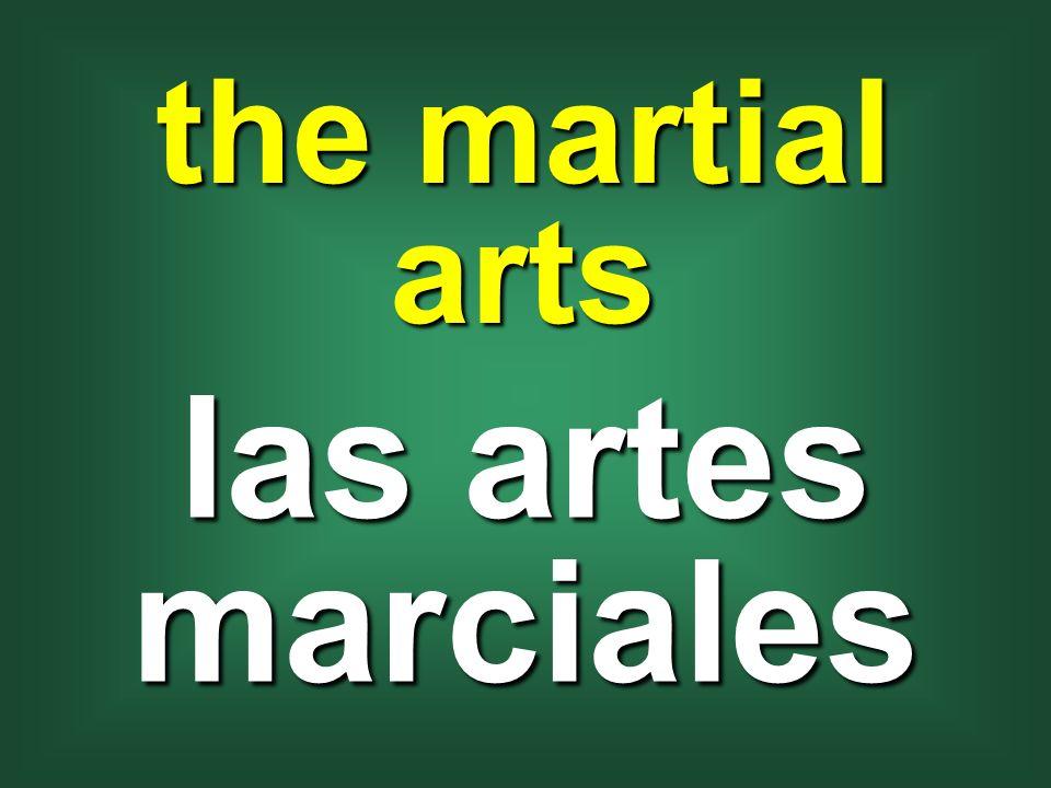 the martial arts las artes marciales