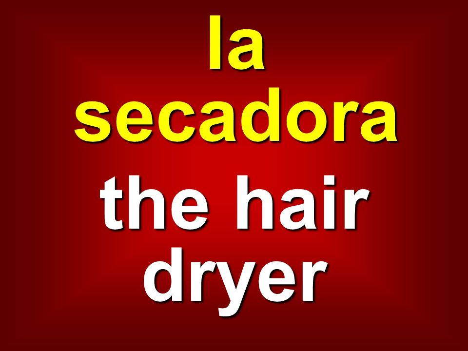la secadora the hair dryer