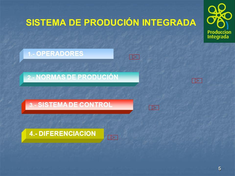 5 2.- NORMAS DE PRODUCIÓN2.- NORMAS DE PRODUCIÓN 1.- OPERADORES 3.- SISTEMA DE CONTROL SISTEMA DE PRODUCIÓN INTEGRADA 4.- DIFERENCIACION