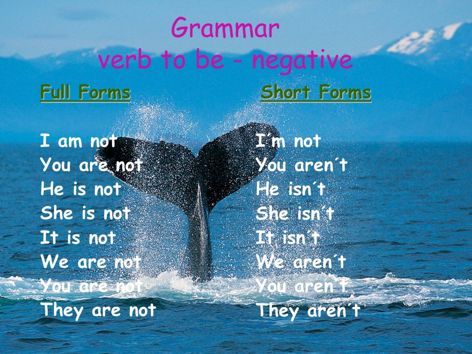 Grammar verb to be - negative Full Forms I am not You are not He is not She is not It is not We are not You are not They are not Short Forms I´m not You aren´t He isn´t She isn´t It isn´t We aren´t You aren´t They aren´t