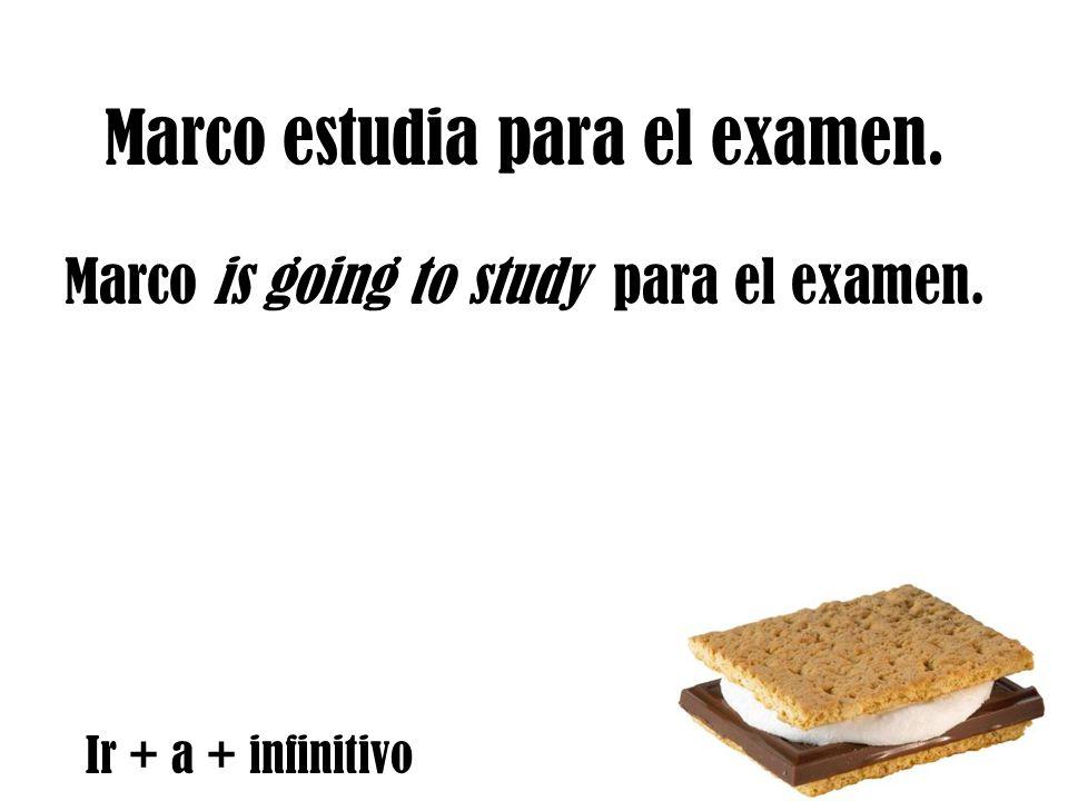 Marco estudia para el examen. Marco is going to study para el examen. Ir + a + infinitivo