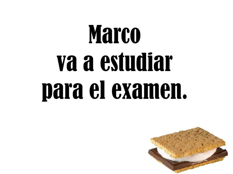 Marco va a estudiar para el examen.