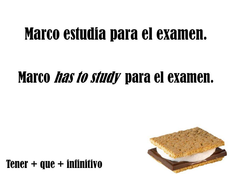 Marco estudia para el examen. Marco has to study para el examen. Tener + que + infinitivo