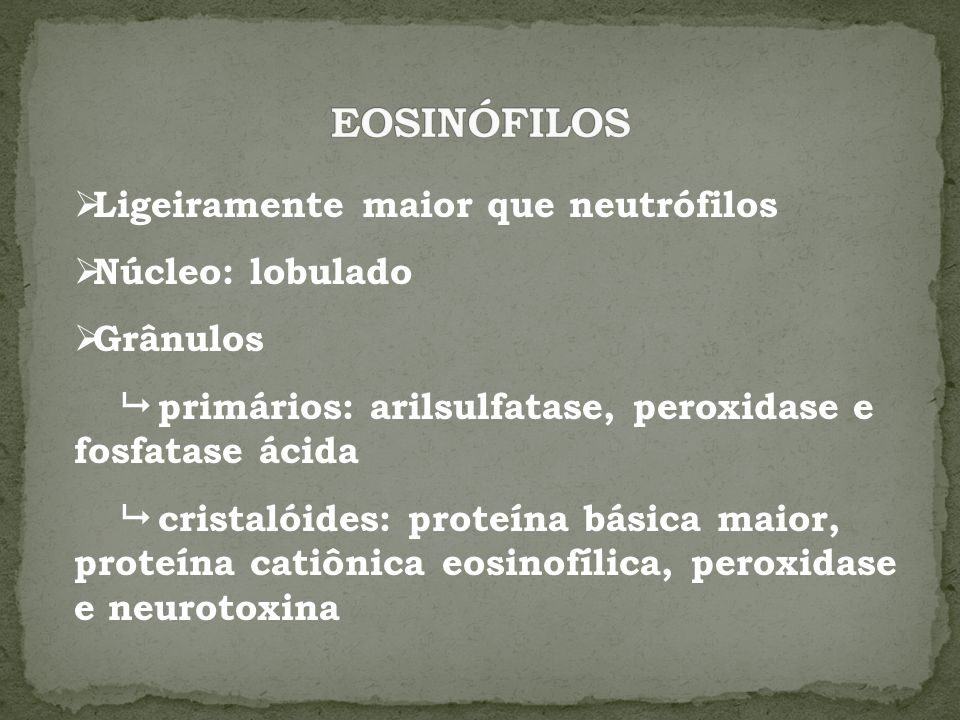 Ligeiramente maior que neutrófilos Núcleo: lobulado Grânulos primários: arilsulfatase, peroxidase e fosfatase ácida cristalóides: proteína básica maio