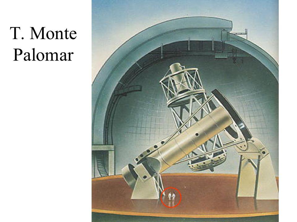 T. Monte Palomar