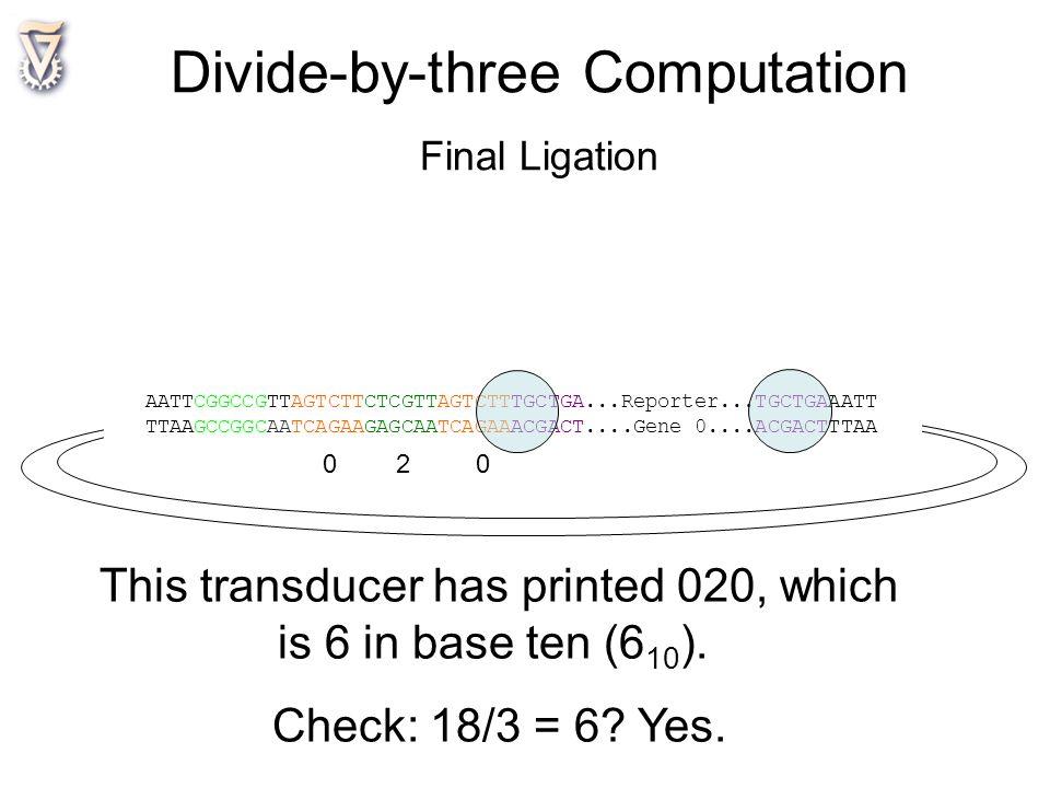 AATTCGGCCGTTAGTCTTCTCGTTAGTCTTTGCTGA...Reporter...TGCTGAAATT TTAAGCCGGCAATCAGAAGAGCAATCAGAAACGACT....Gene 0....ACGACTTTAA 0 2 0 This transducer has pr