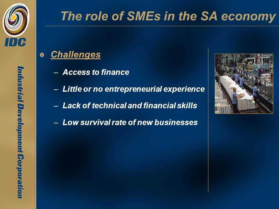 Challenges –Access to finance –Little or no entrepreneurial experience –Lack of technical and financial skills –Low survival rate of new businesses Th