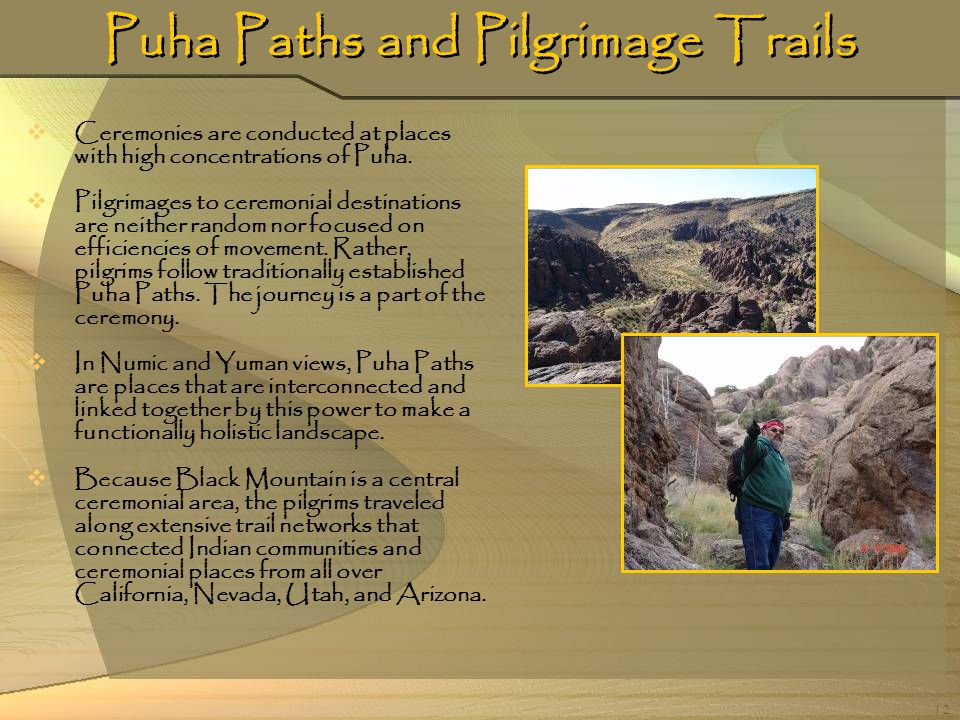 12 Puha Paths and Pilgrimage Trails Ceremonies are conducted at places with high concentrations of Puha. Pilgrimages to ceremonial destinations are ne