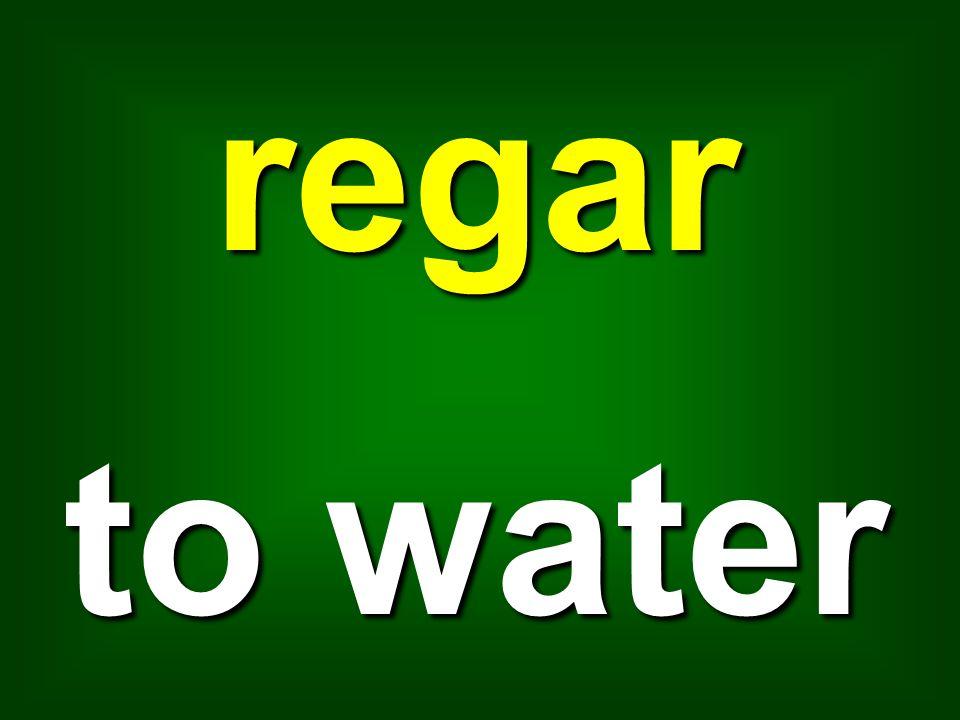regar to water