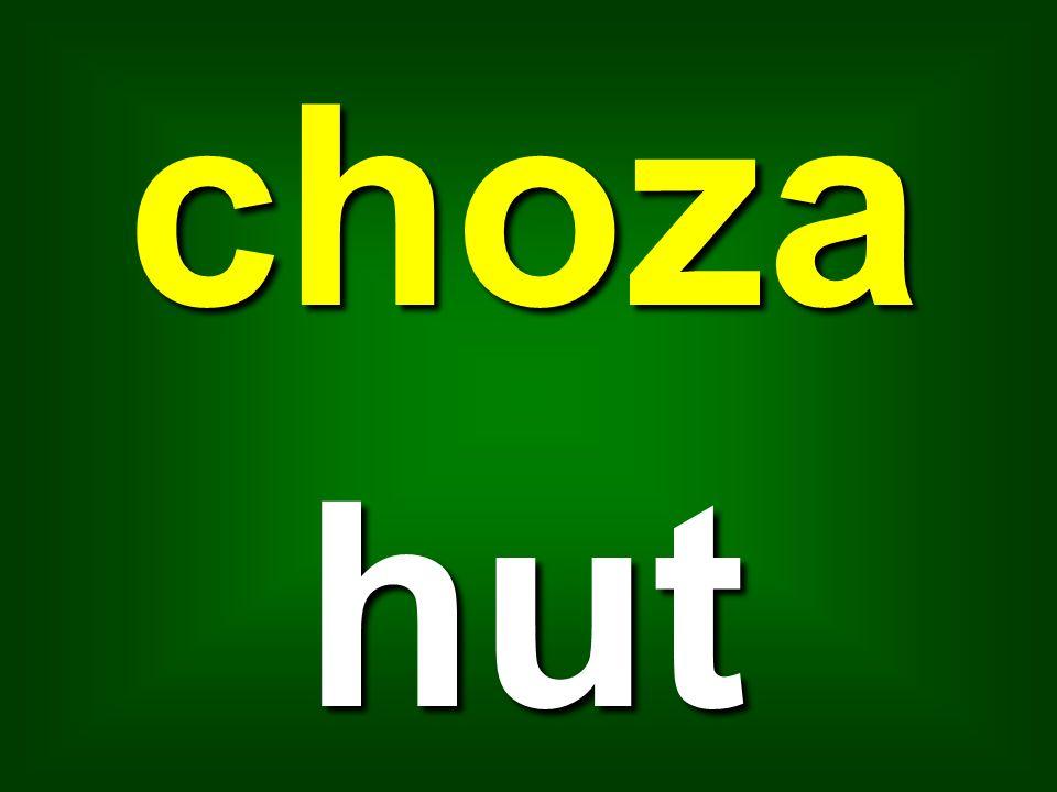 choza hut