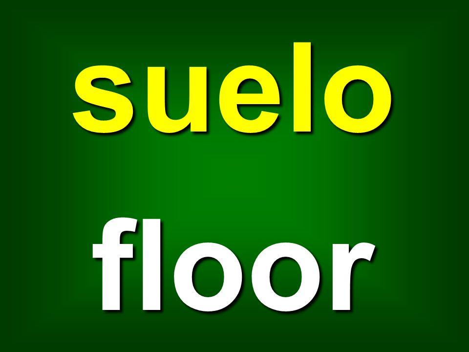 suelo floor