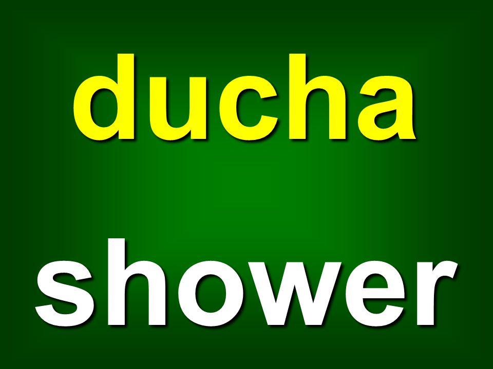 ducha shower