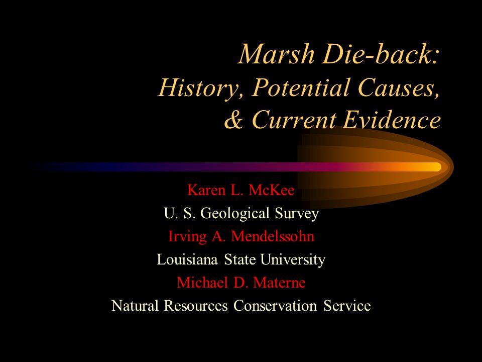 Marsh Die-back: History, Potential Causes, & Current Evidence Karen L. McKee U. S. Geological Survey Irving A. Mendelssohn Louisiana State University