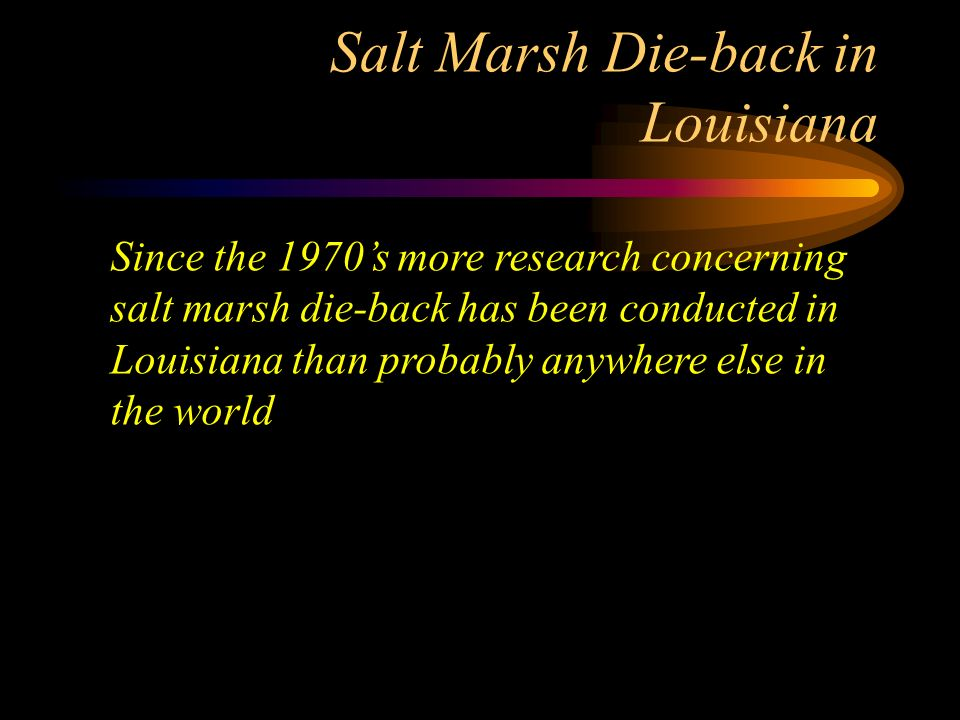 Salt Marsh Die-back in Louisiana Since the 1970s more research concerning salt marsh die-back has been conducted in Louisiana than probably anywhere e