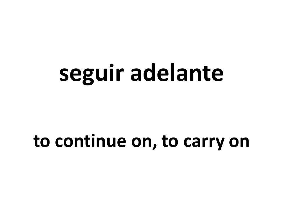 seguir adelante to continue on, to carry on