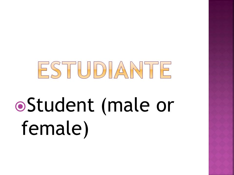 Student (male or female)