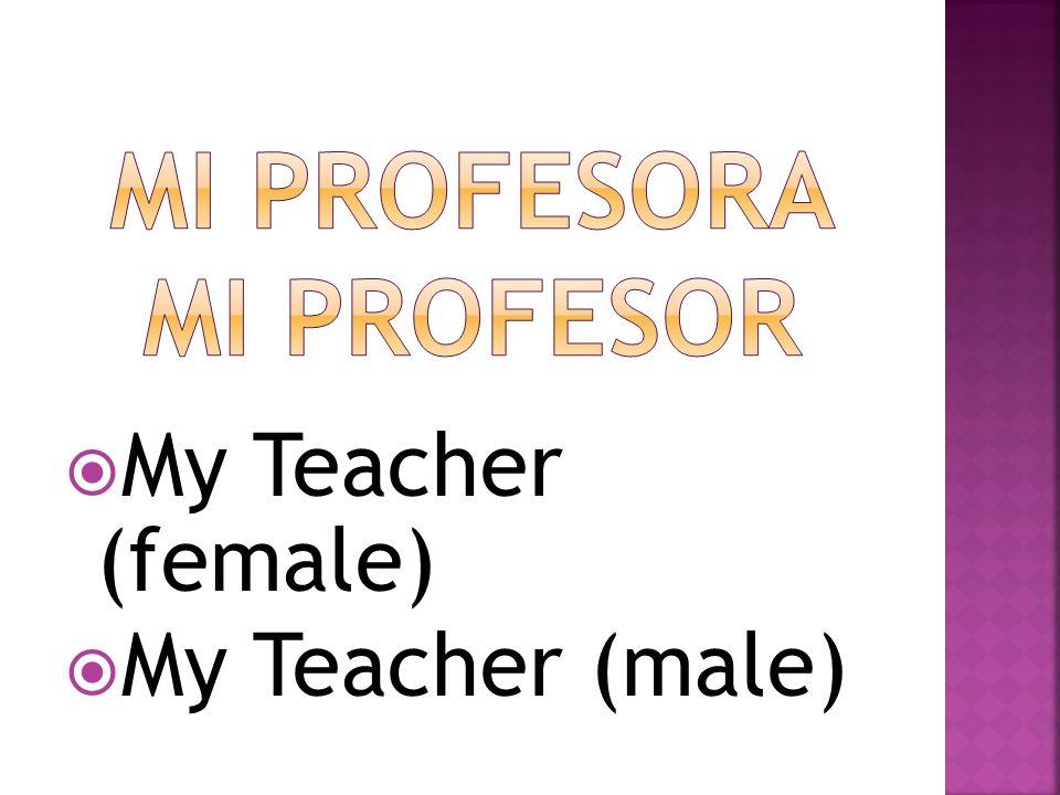 My Teacher (female) My Teacher (male)
