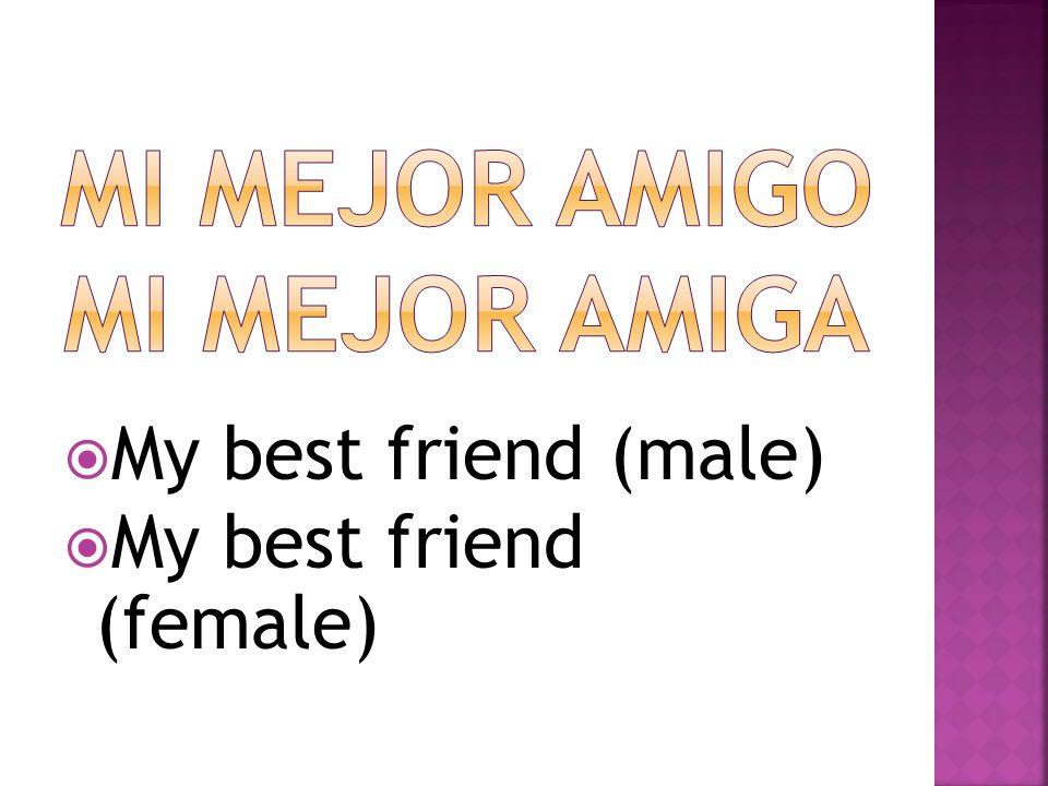My best friend (male) My best friend (female)