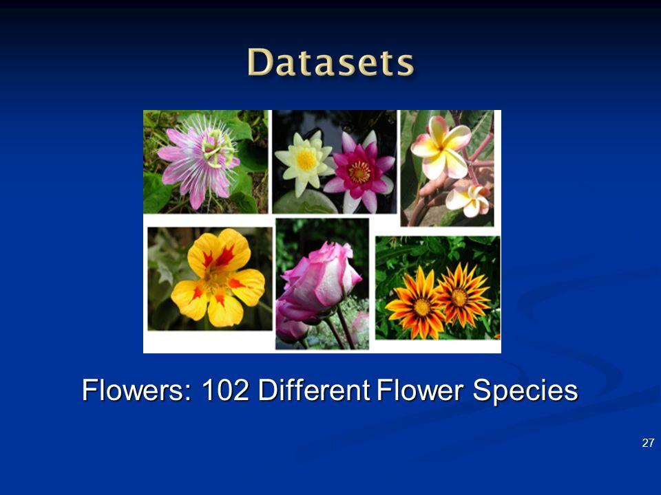 27 Flowers: 102 Different Flower Species