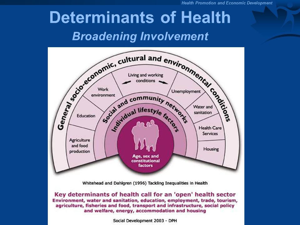 Health Promotion and Economic Development Determinants of Health Broadening Involvement