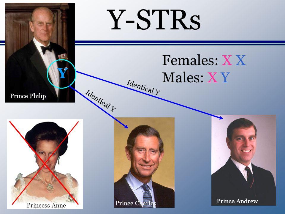 Y-STRs Y Prince Philip Prince Charles Princess Anne Prince Andrew Females: X X Males: X Y Identical Y