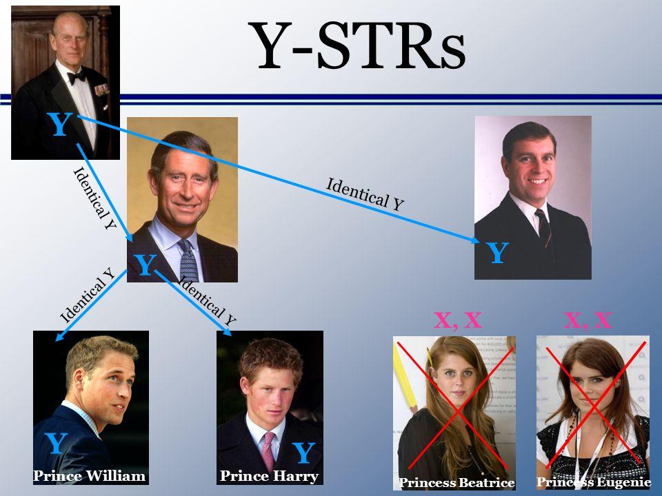 Y-STRs Y Prince WilliamPrince Harry Princess Beatrice Princess Eugenie Y Y Y Y X, X Identical Y