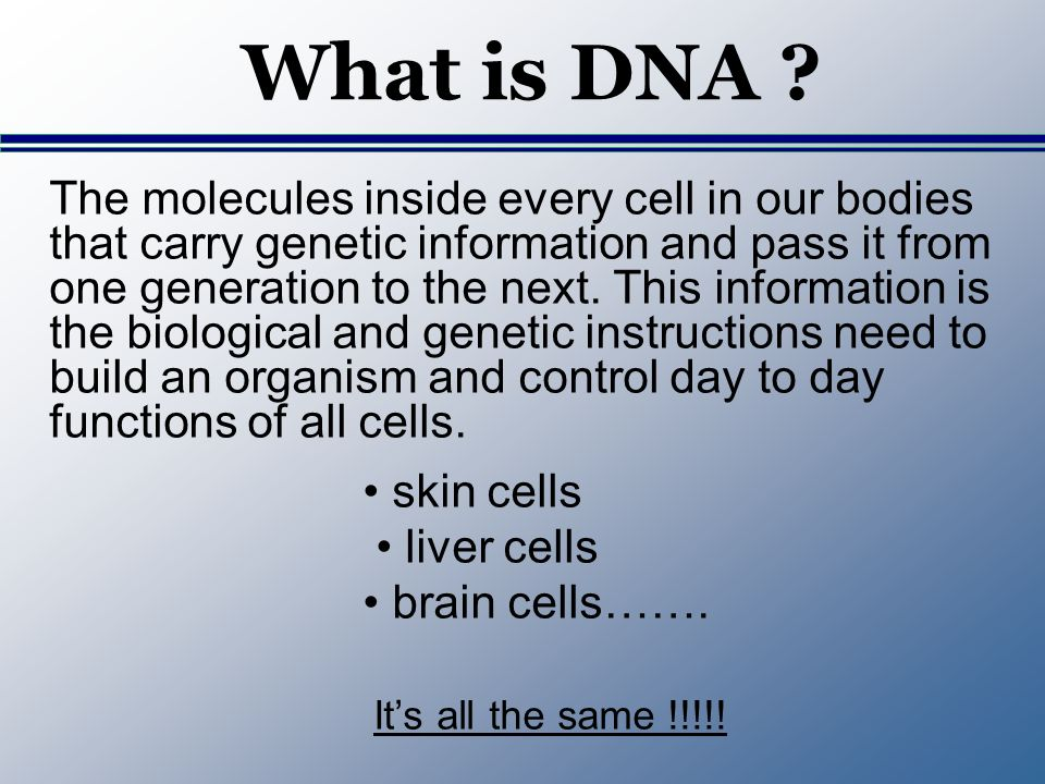 What is DNA ? The molecules inside every cell in our bodies that carry genetic information and pass it from one generation to the next. This informati