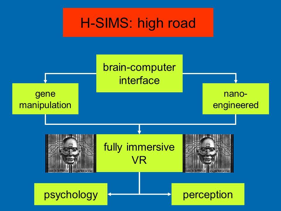 H-SIMS: high road brain-computer interface gene manipulation nano- engineered fully immersive VR psychologyperception