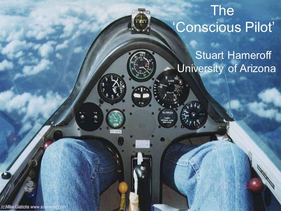 The Conscious Pilot Stuart Hameroff University of Arizona