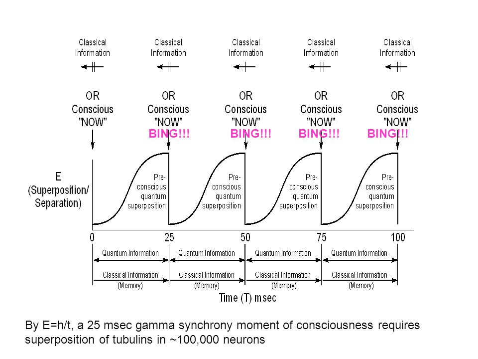 BING!!! BING!!! BING!!! BING!!! By E=h/t, a 25 msec gamma synchrony moment of consciousness requires superposition of tubulins in ~100,000 neurons