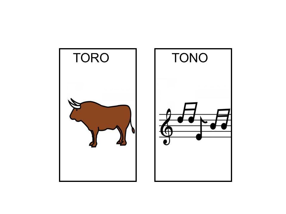 TONO TORO