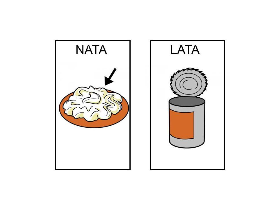 NATA LATA