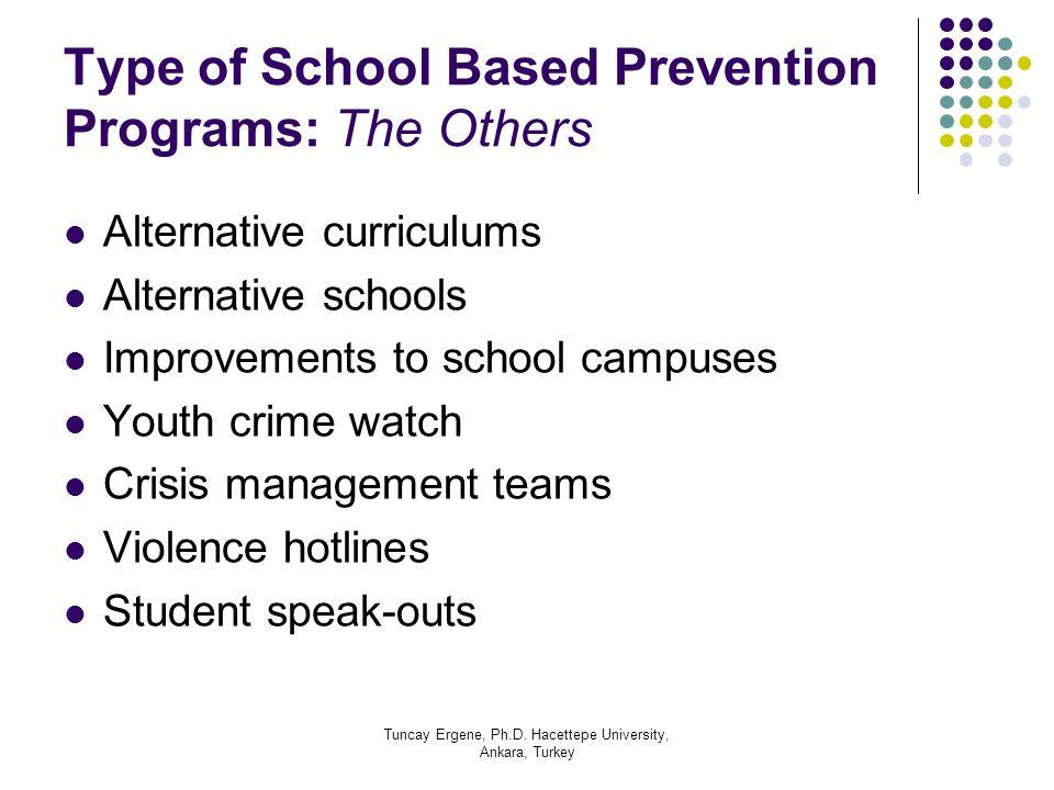 Tuncay Ergene, Ph.D. Hacettepe University, Ankara, Turkey Type of School Based Prevention Programs: The Others Alternative curriculums Alternative sch