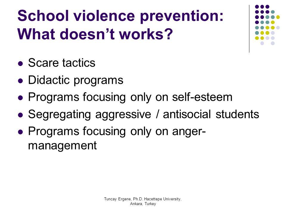 Tuncay Ergene, Ph.D. Hacettepe University, Ankara, Turkey School violence prevention: What doesnt works? Scare tactics Didactic programs Programs focu