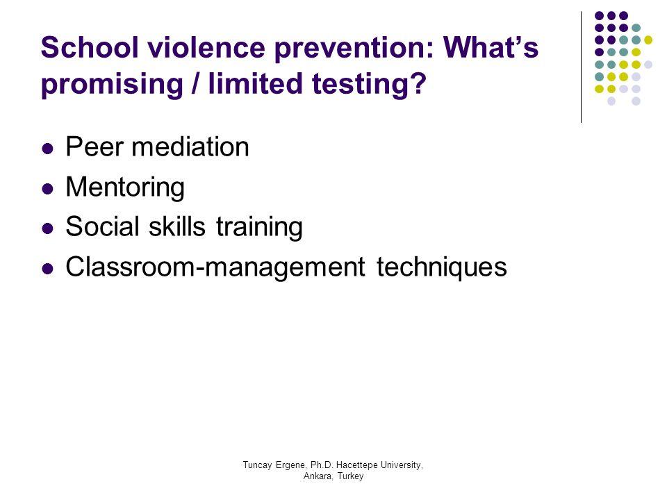 Tuncay Ergene, Ph.D. Hacettepe University, Ankara, Turkey School violence prevention: Whats promising / limited testing? Peer mediation Mentoring Soci