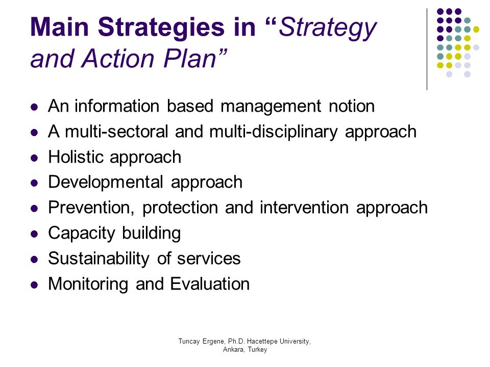 Tuncay Ergene, Ph.D. Hacettepe University, Ankara, Turkey Main Strategies in Strategy and Action Plan An information based management notion A multi-s