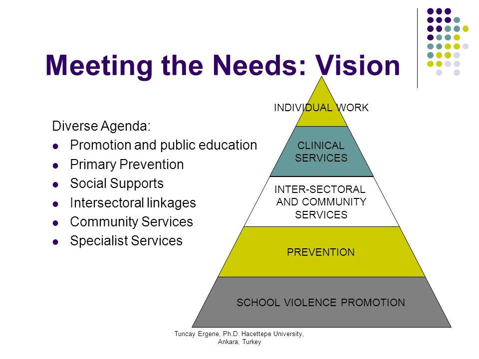 Tuncay Ergene, Ph.D. Hacettepe University, Ankara, Turkey Meeting the Needs: Vision Diverse Agenda: Promotion and public education Primary Prevention