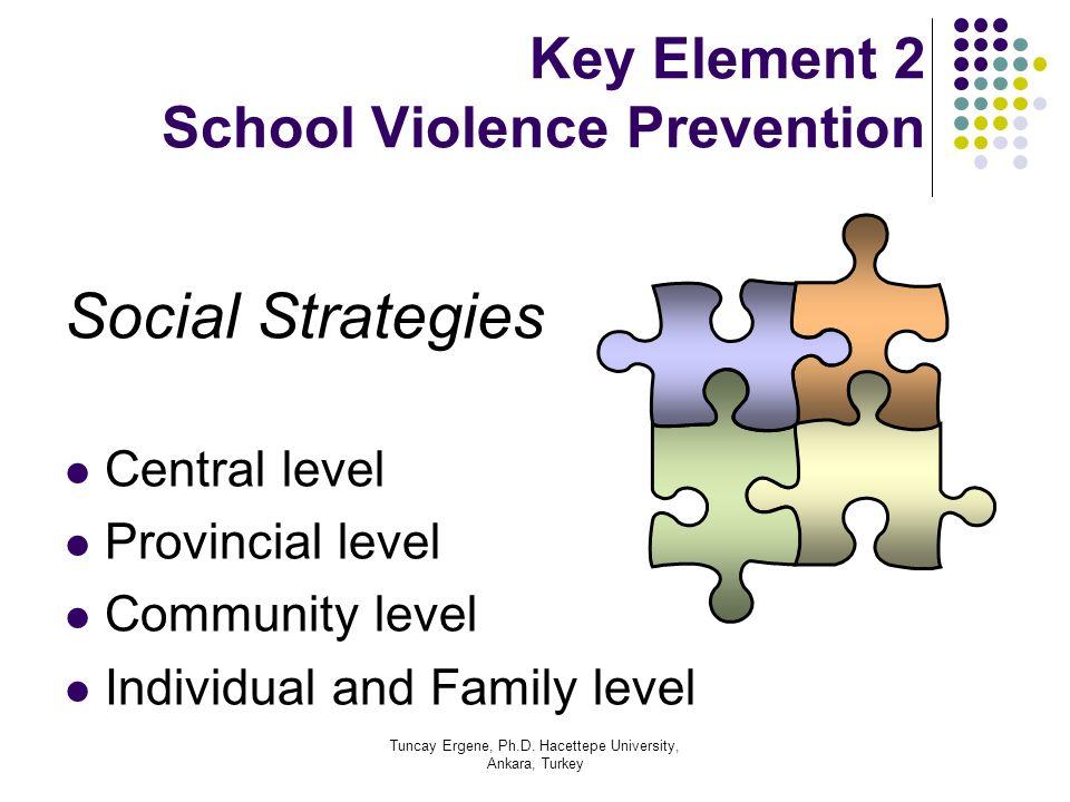 Tuncay Ergene, Ph.D. Hacettepe University, Ankara, Turkey Key Element 2 School Violence Prevention Social Strategies Central level Provincial level Co