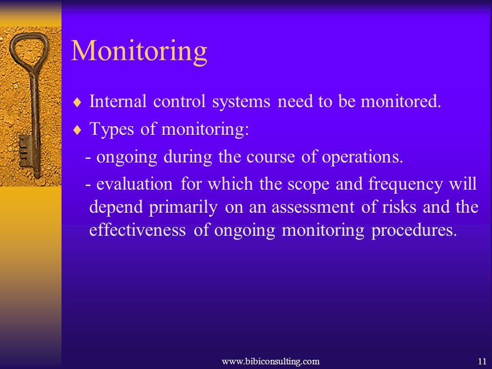 www.bibiconsulting.com11 Monitoring Internal control systems need to be monitored. Types of monitoring: - ongoing during the course of operations. - e
