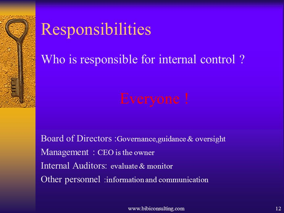 www.bibiconsulting.com12 Responsibilities Who is responsible for internal control ? Everyone ! Board of Directors : Governance,guidance & oversight Ma