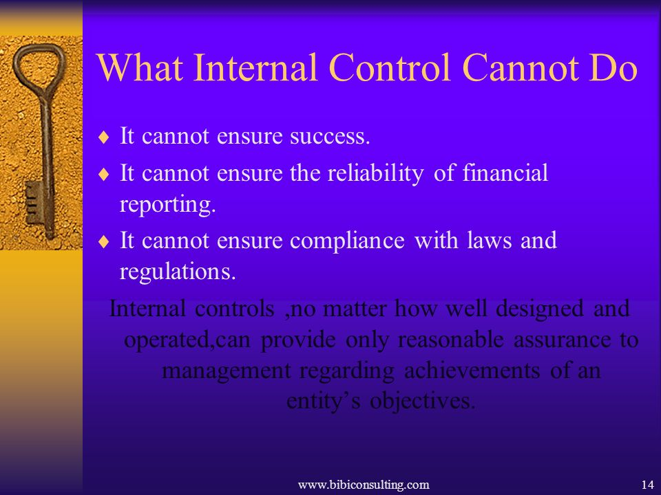 www.bibiconsulting.com14 What Internal Control Cannot Do It cannot ensure success. It cannot ensure the reliability of financial reporting. It cannot